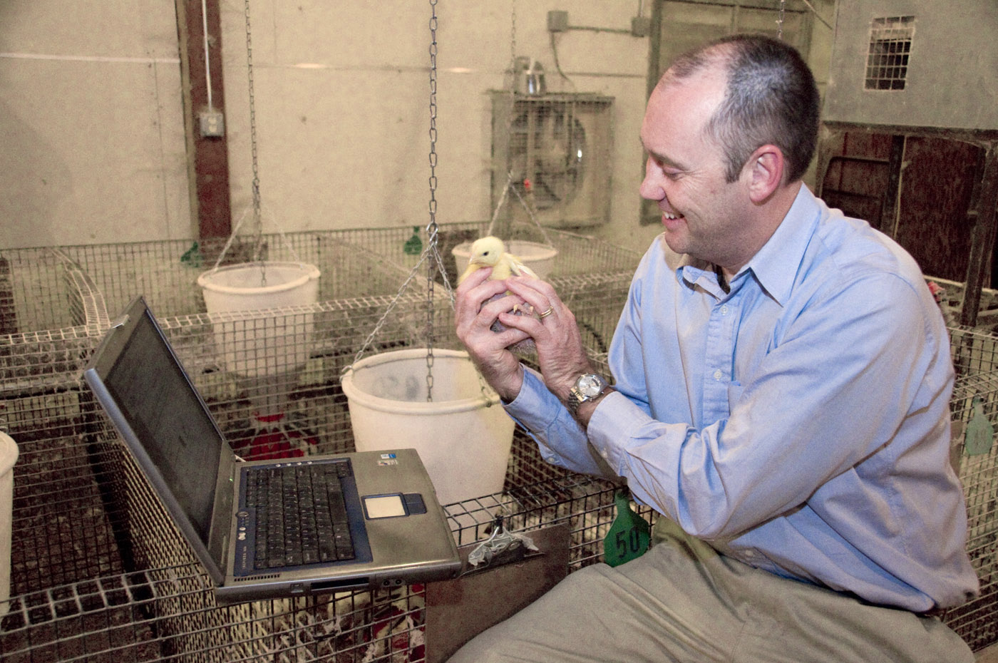Federal grant furthers chicken genome work | Mississippi