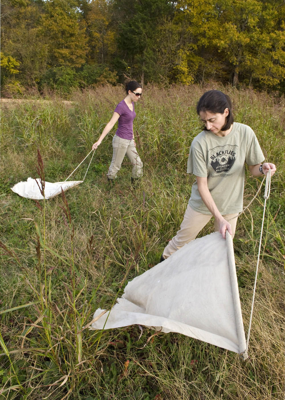 Parasitology research impacts multiple species   Mississippi State ...