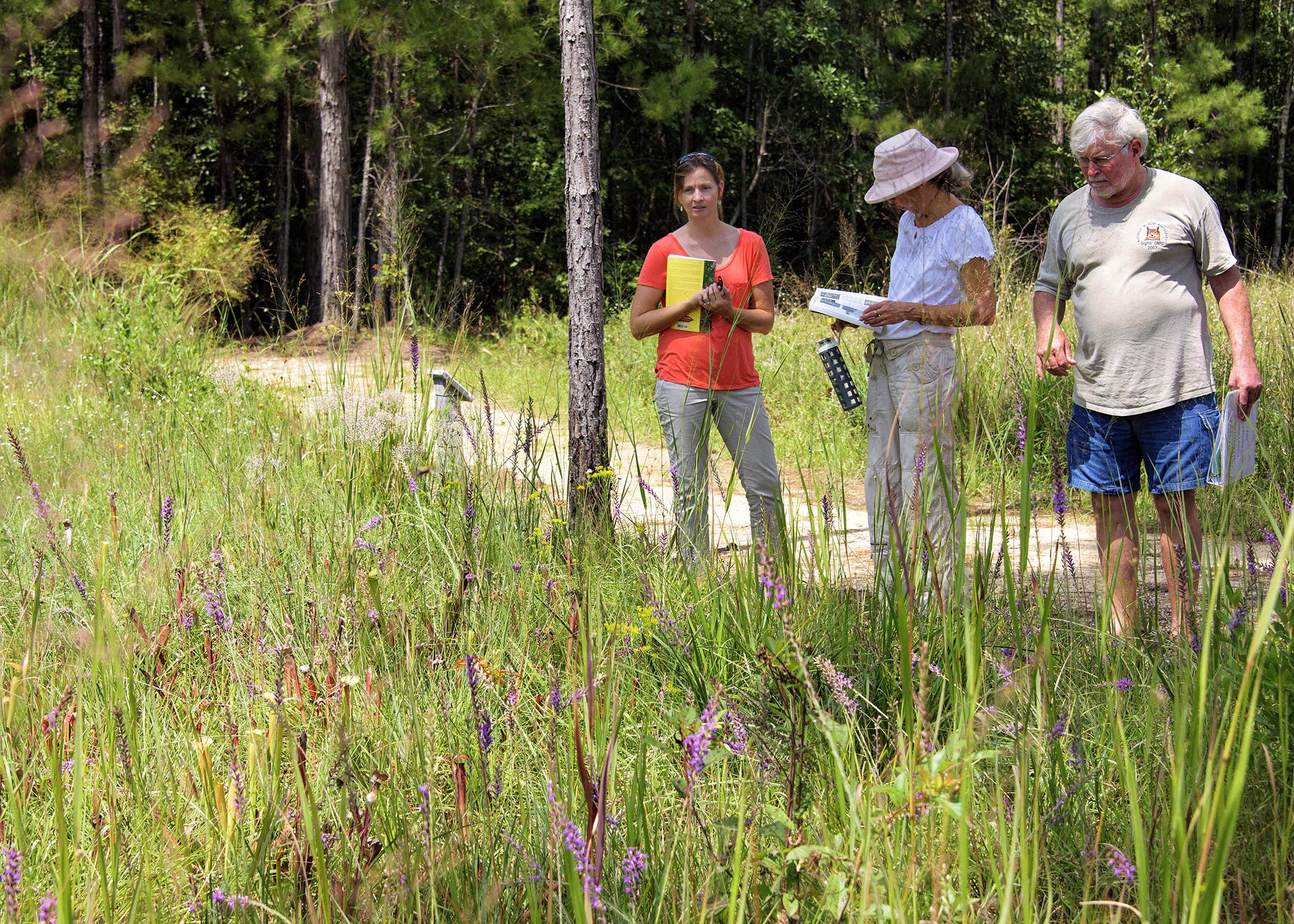 Two women and one man take in a field of native flowers and grasses at the Mississippi State University Crosby Arboretum during a class field trip.