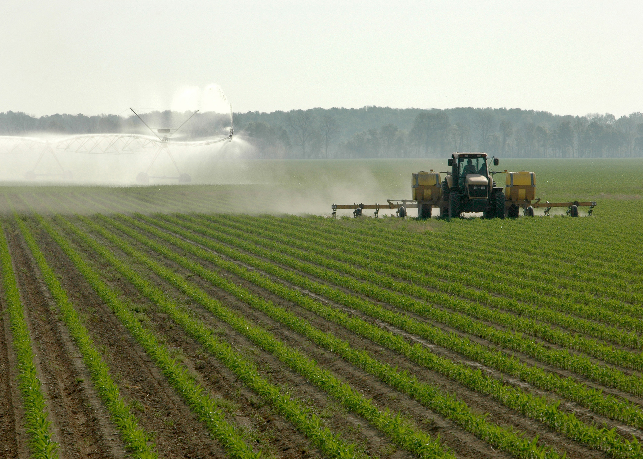 List of synonyms and antonyms of the word mississippi farms - Craigslist farm and garden york pa ...