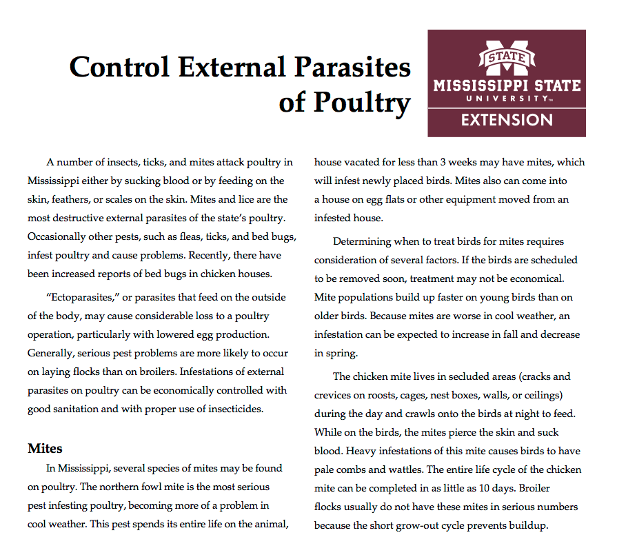 Control External Parasites of Poultry | Mississippi State