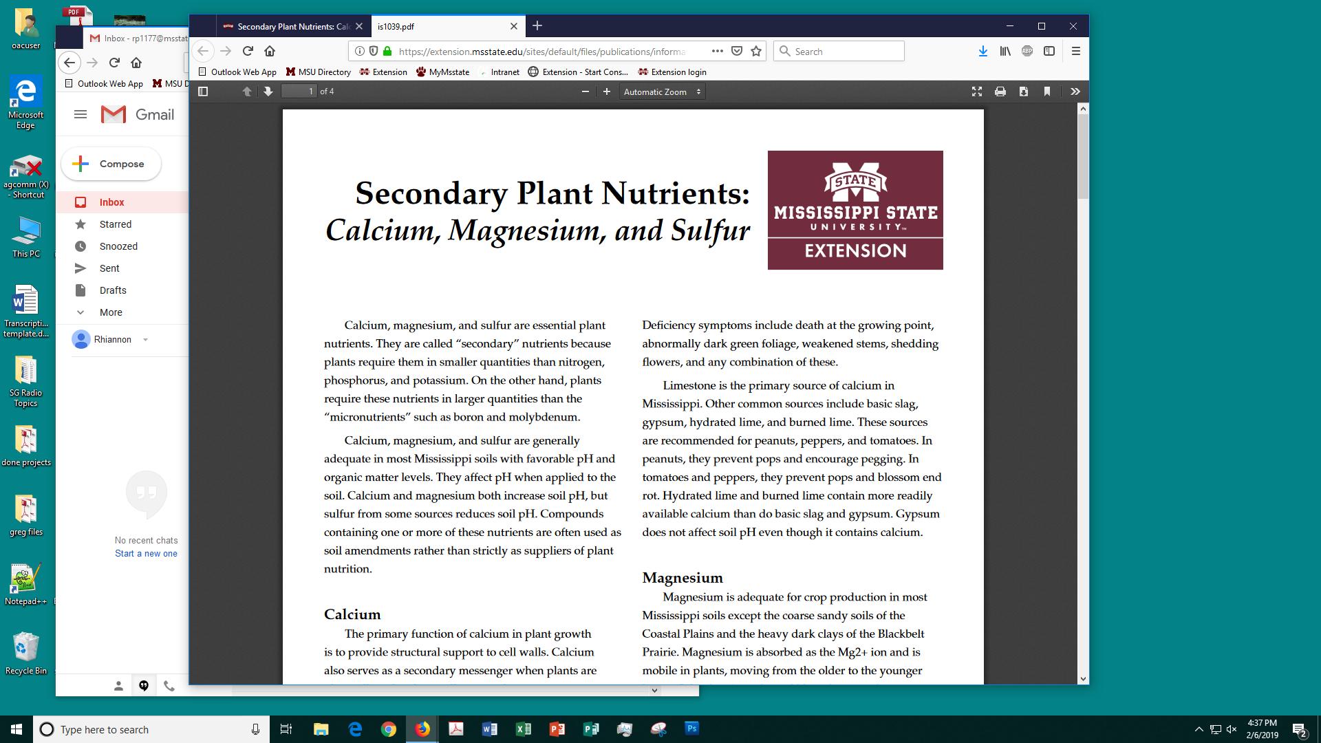 Secondary Plant Nutrients: Calcium, Magnesium, and Sulfur