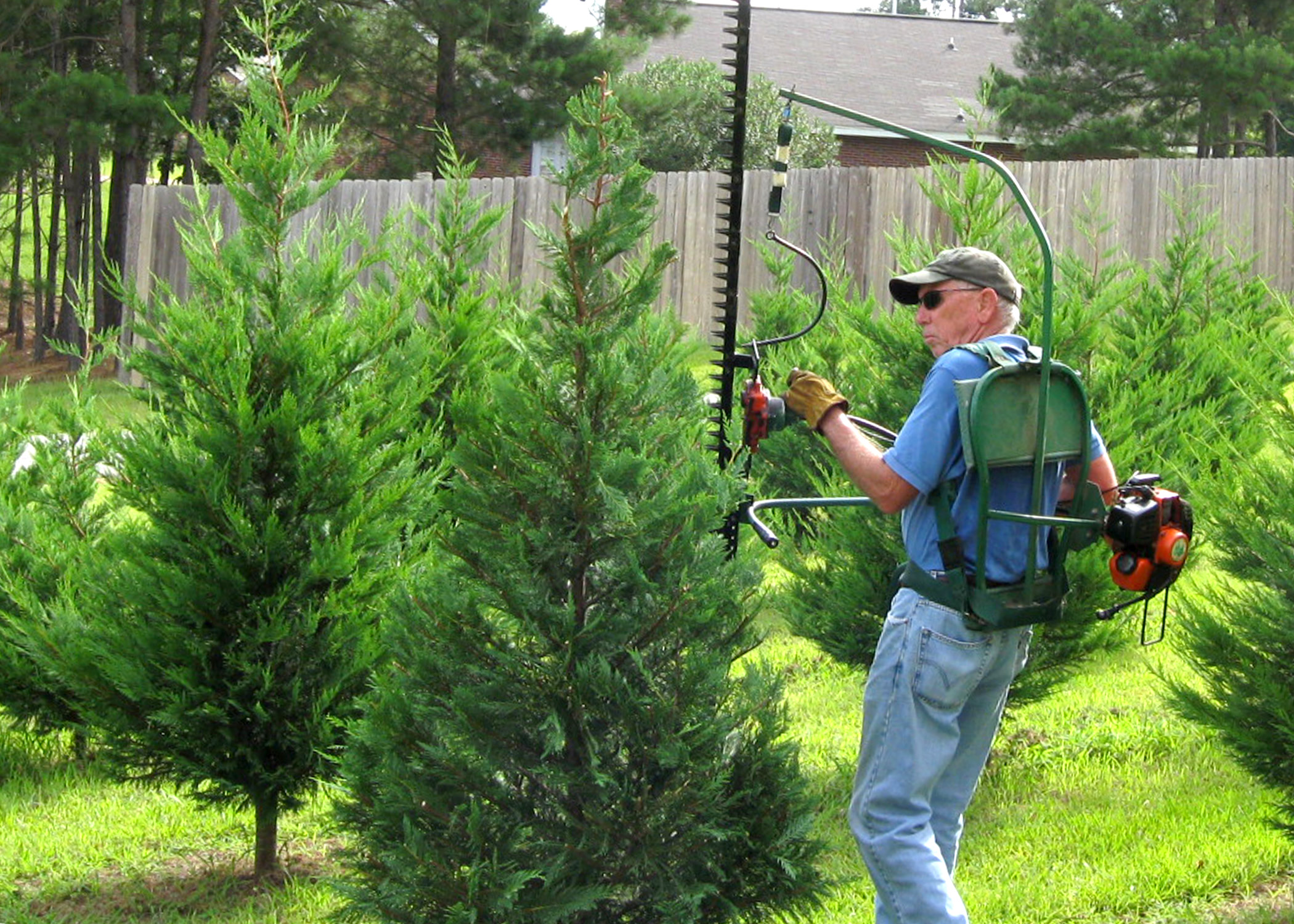 Christmas tree farmer Bob Shearer, of Purvis, uses a shearing machine to  trim trees
