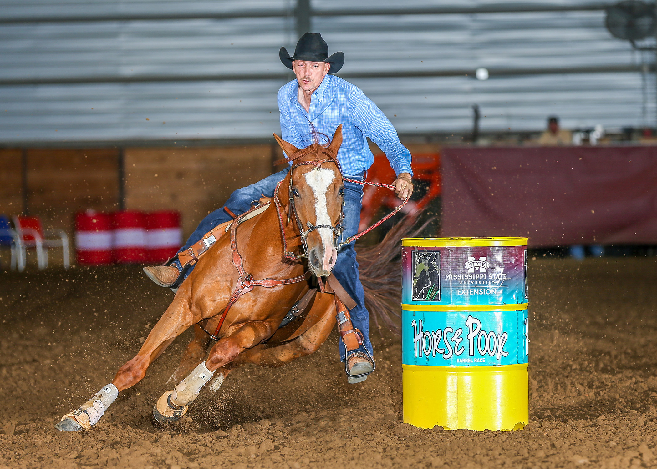 MSU Online Horse Judging | Mississippi State University Extension ...