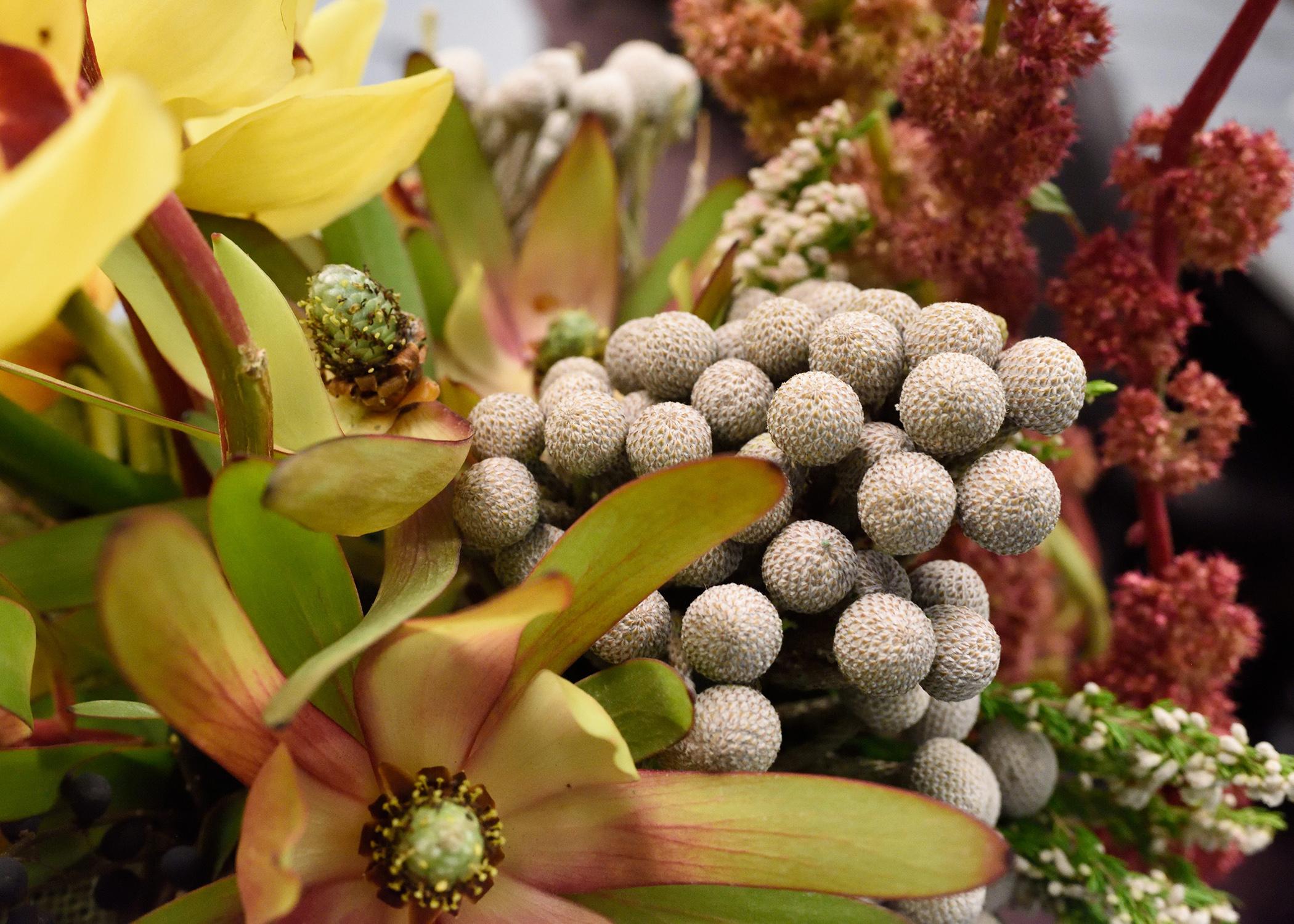 Master Floral Designer Mississippi State University Extension Service