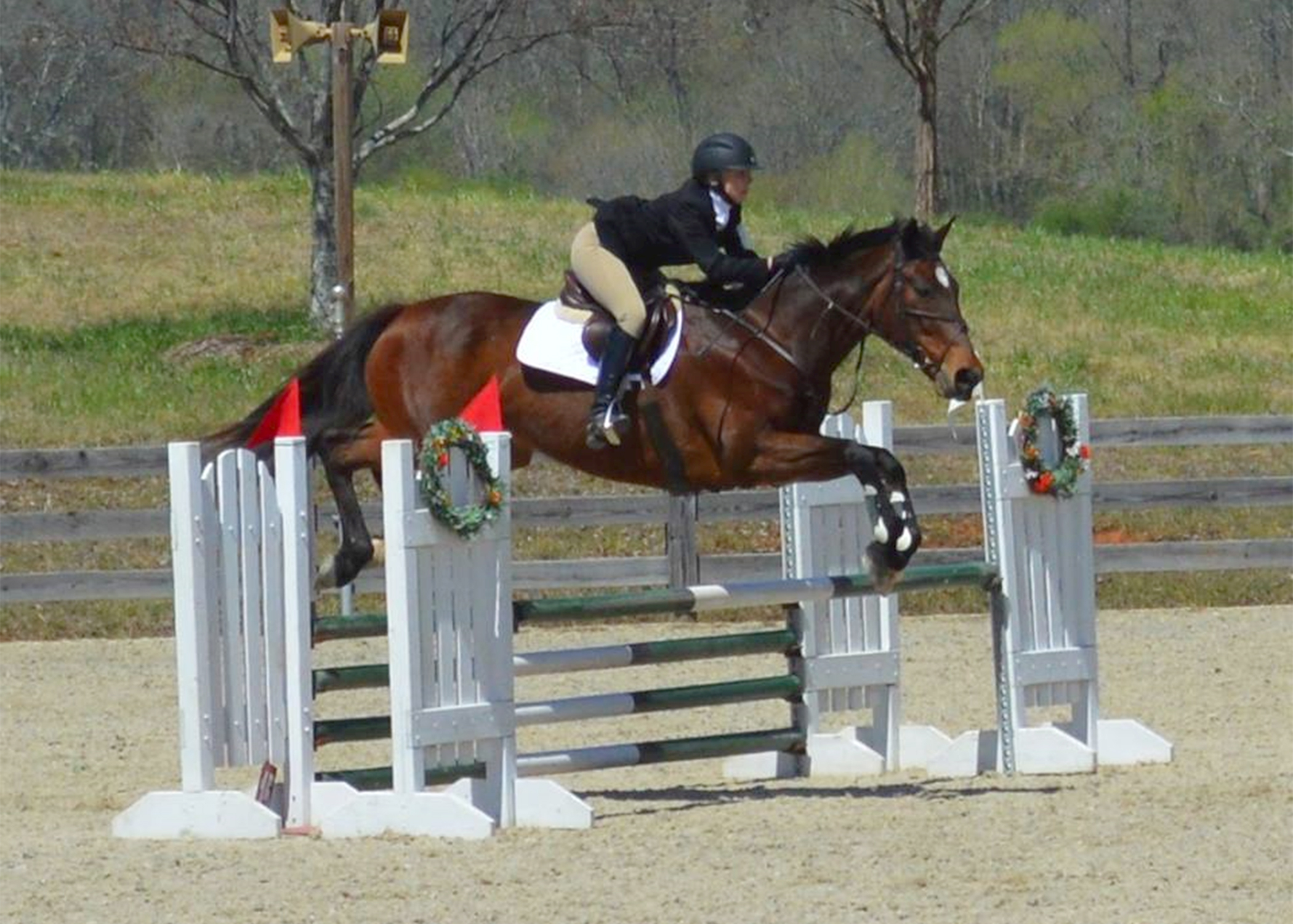 Msu Introduces New Equestrian Club Sport Mississippi