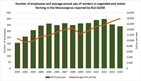 This graph shows the number of employees and average annual pay of workers in vegetable and melon farming in Mississippi as reported by BLS-QCEW