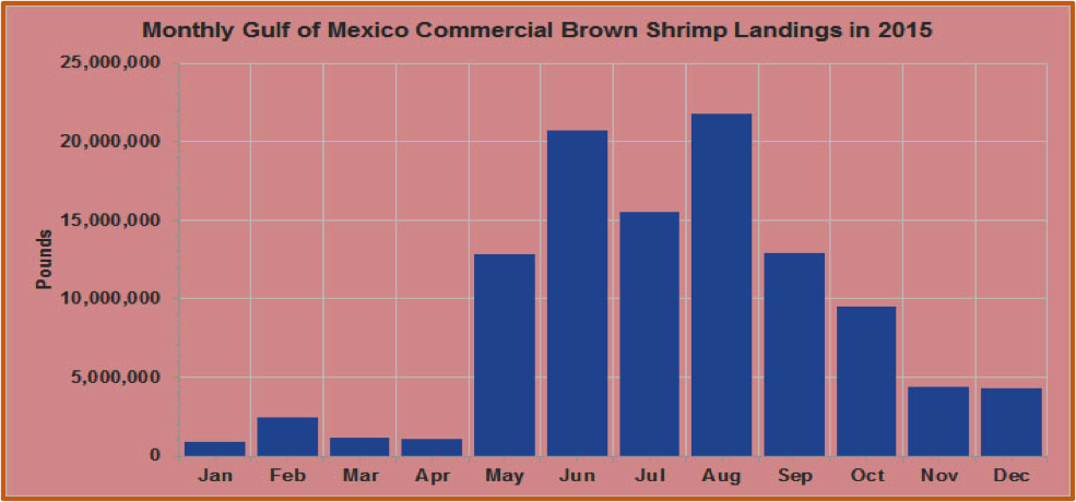 Chart showing the monthly Gulf of Mexico Commercial Brown Shrimp Lnadings in 2015.
