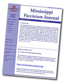 Image of one of the newsletters.