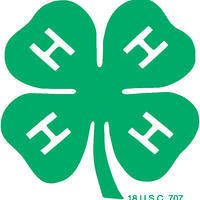 This is an image of the 4-H logo.