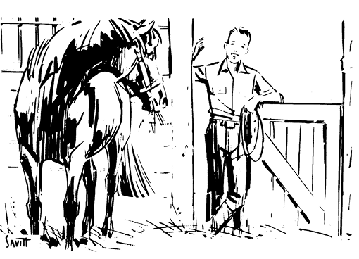 Illustration of a horse and a boy. The boy is standing in the doorway of the horse's stable with a rope. The horse is looking back at the boy.