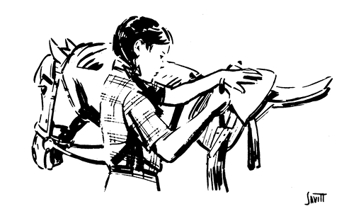 Illustration of a girl and a horse with a saddle. The girl is securing the girth of the saddle.