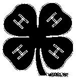 4-H clover logo.
