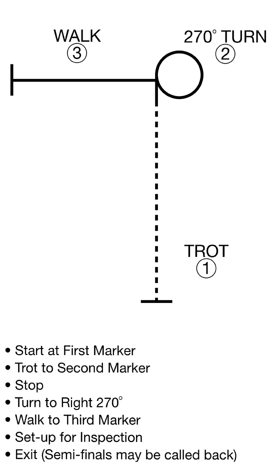 A horse pattern with the following steps: start at first marker, trot to second marker, stop, turn to right 270 degrees, walk to third marker, set-up for inspection, exit (semi-finalists may be called back).