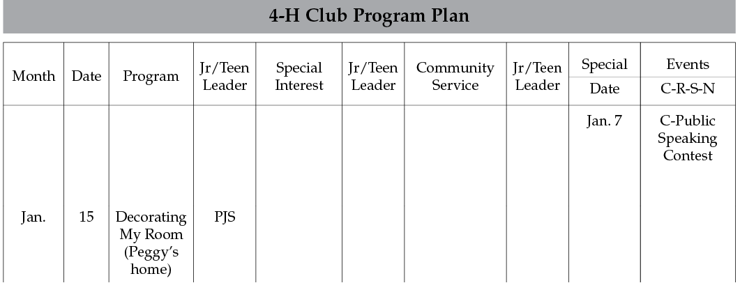 sample of the 4-H Club Program Plan