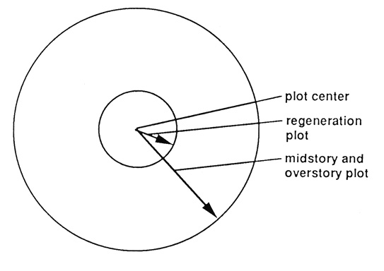 Diagram of concentric circle plots labeled plot center, regeneration plot, and midstory and overstory plot.