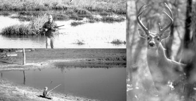 image of buck deer in the woods. A man with rifle. and a little boy fishing in a pond.