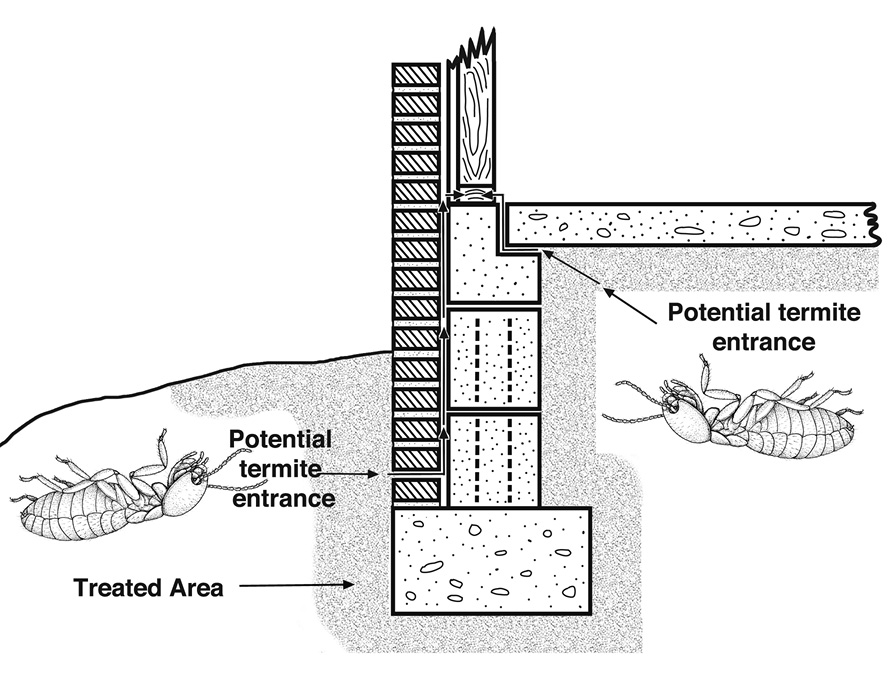 Illustration showing a termiticide treatment band around the perimeter of a building.