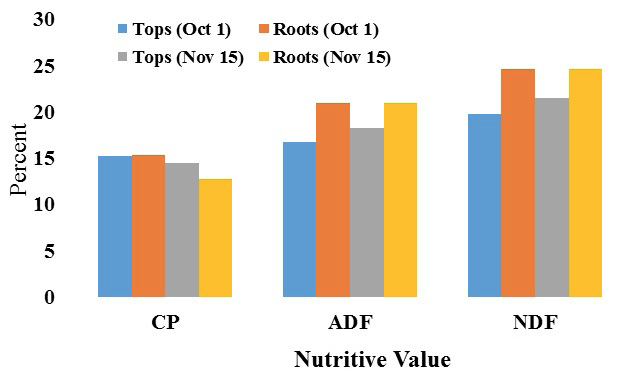 Graph of the percentage of nutritive value from CP's, ADF's, NDF's turnip tops and roots during October 1st and November 15th. CP's percentage of nutritive value of the tops during October 1st is at 15%. The roots during October 1st are at 15%. The tops for November 15th are at 14% while the roots during November 15th are roughly at 13%. ADF's percentage of nutritive value for the tops during October 1st is roughly 18%. The roots during October 1st are at 24%. The tops during November 15th are at 19%, and the roots during November 15th are at 25%. NDF's percentage of nutritive value for the tops during October 1st is 20%. The roots during October 1st are at 25%. The tops during November 15th are at 23%, and the roots during November 15th are at 15%.