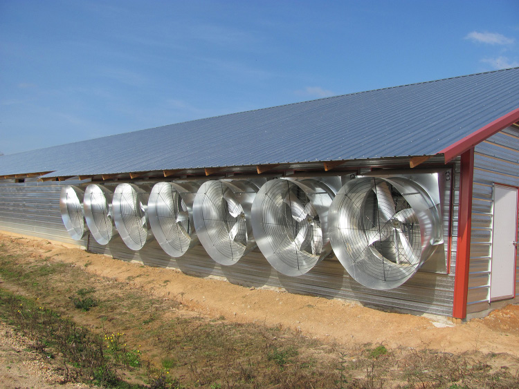 Seven large metal fans on the side of a metal-plated broiler house.