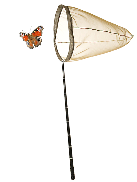 This is an illustration of a butterfly in the process of being caught in a net.