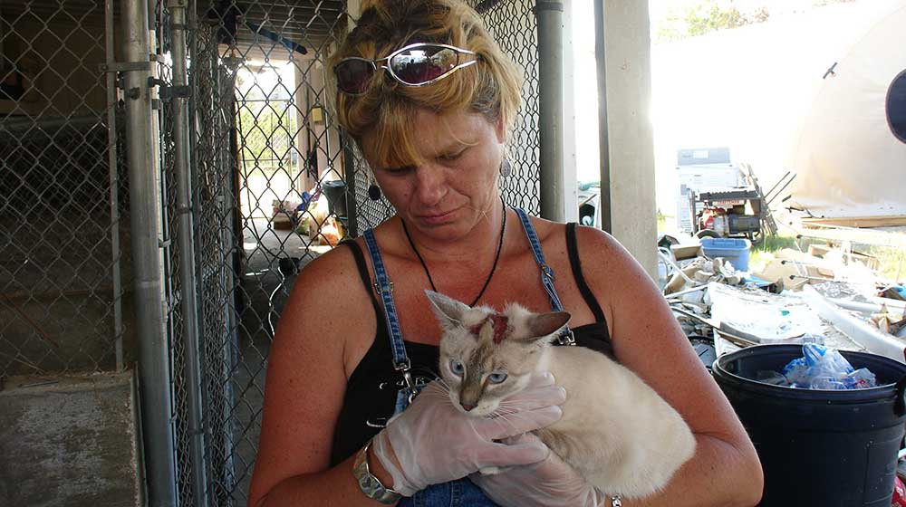 A woman attends to a cat after a disaster.