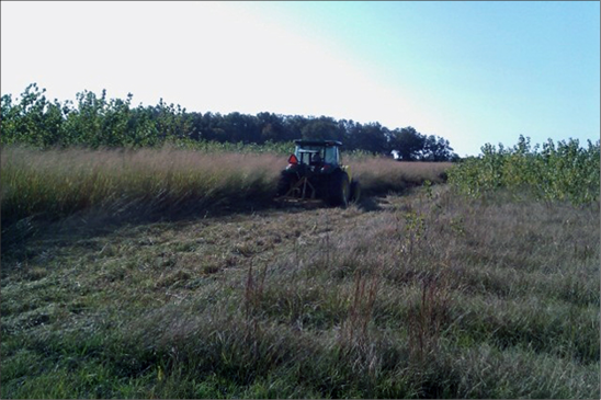 A bush hog mows vegetation in an agricultural field.