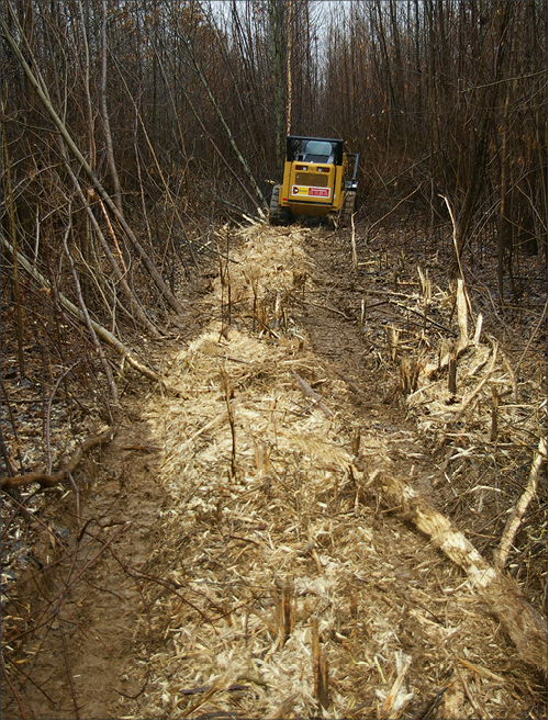 A large piece of equipment in a hardwood forest. The foreground shows stumps of large-diameter woody stems that have been mulched.