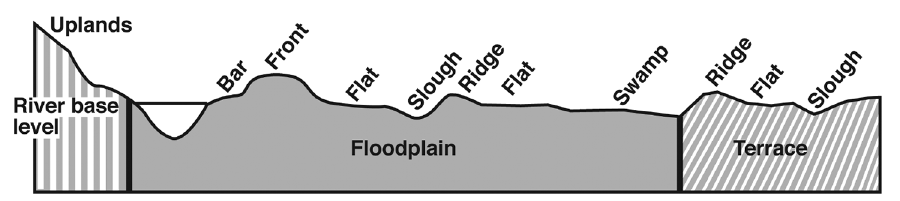 Figure 3. A typical floodplain. Source: Mississippi State University Extension Service Publication 2004 Bottomland Hardwood Management Species/Site Relationships.