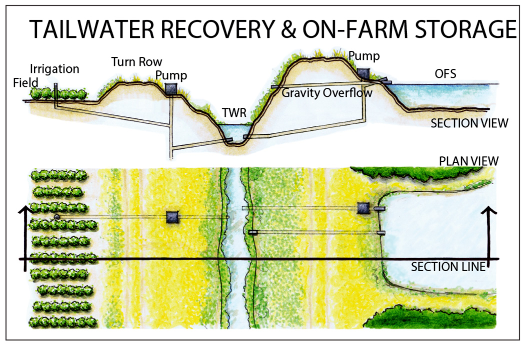 Schematic of tailwater recovery system with on-farm storage reservoir (OFS).