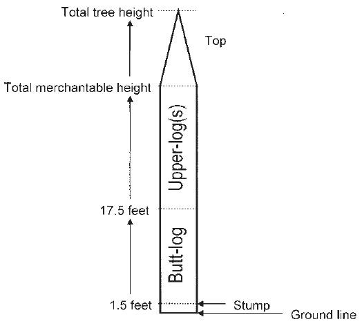 log locations within the main stem of a tree. Butt-log 1.5 to 17.5 feet, Upper-Log(s) 17.5 feet to Total merchantable height, the top is the total tree height.