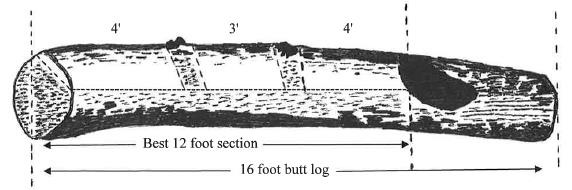 An example of an F2-grade butt-log.
