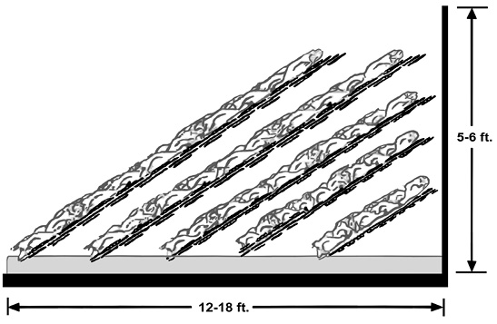 Figure 4. Side view of compost at an angle in an alleyway composter. Width may be 12–18 feet and height should not exceed 5–6 feet. A concrete slab is at the lowermost level. Leave 6–8 inches of space between bird carcasses and the sidewalls on all sides.