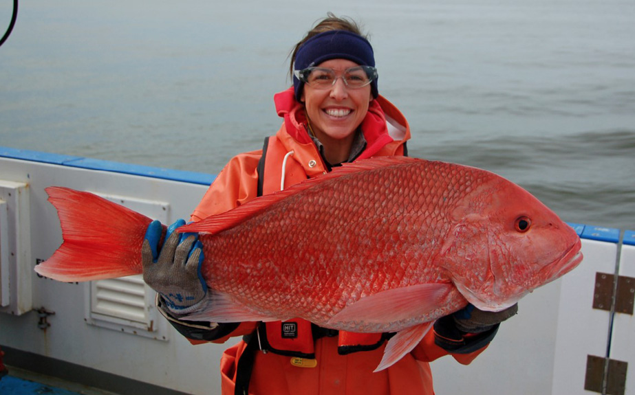 A woman stands on a boat holding out a great red snapper with both hands. The woman is wearing glasses, ear muffs, a red raincoat, and gloves. The red snapper is about two times the length of the woman's shoulders. The great red snapper stock is depleted due to overfishing.