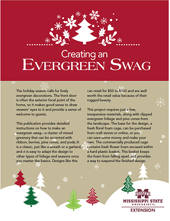 Cover of Creating an Evergreen Swag