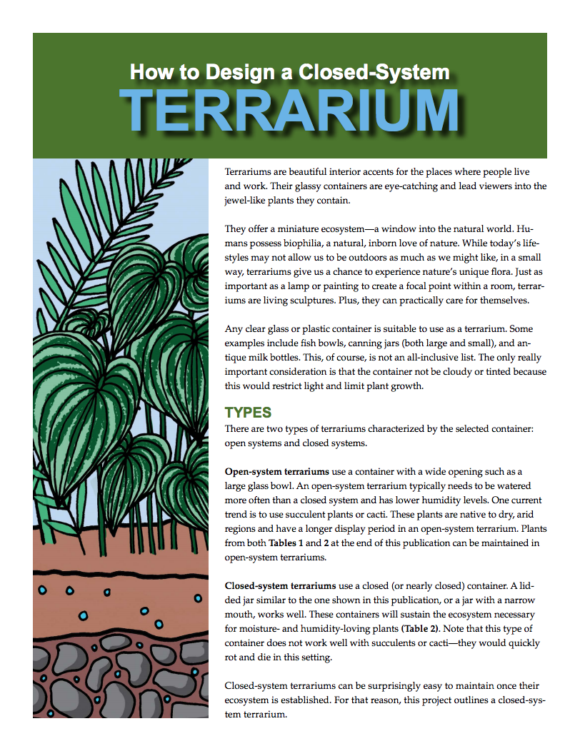 How To Design A Closed System Terrarium Mississippi State University Extension Service