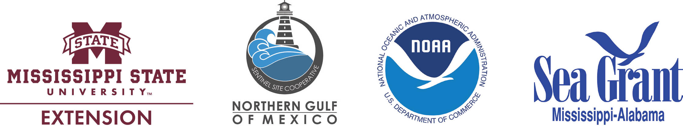 Logos: Mississippi State University Extension Service; Northern Gulf of Mexico Sentinel Site Cooperative; National Oceanic and Atmospheric Administration; Mississippi-Alabama Sea Grant.