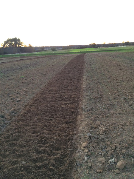 A wide open area of plowed dirt with one row that is slightly darker.