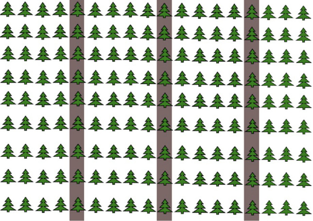 Diagram of rows of trees with every fifth row shaded.