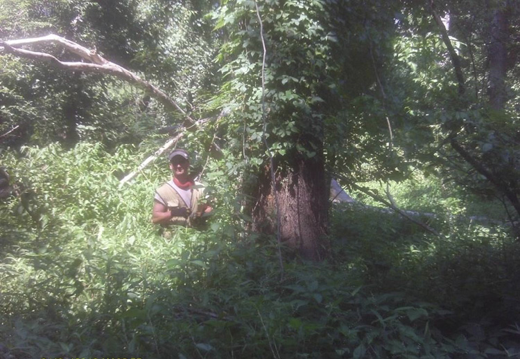 A person standing in chest-deep vegetation next to a large tree trunk.
