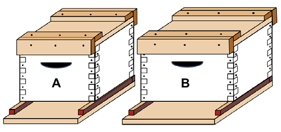 Diagram of two different sizes of hive boxes. One is narrower than the other.