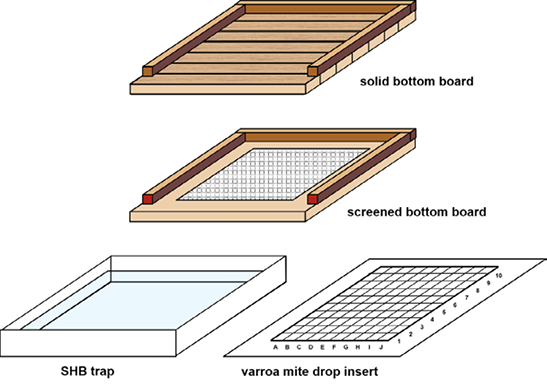 Diagram of a solid bottom board, a screened bottom board, an SHB trap, and a varroa mite drop insert.