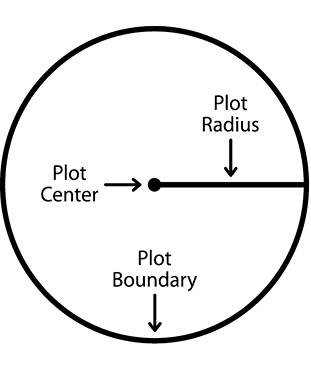 An example inventory plot. The diagram shows the circular plot (the given circle is the plot boundary), indicates the plot center with an arrow and dot, and indicates the plot radius with a line.