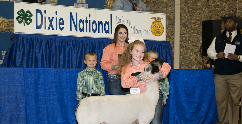 Young girl shows off her prize competition animal with several other particpants in the background.