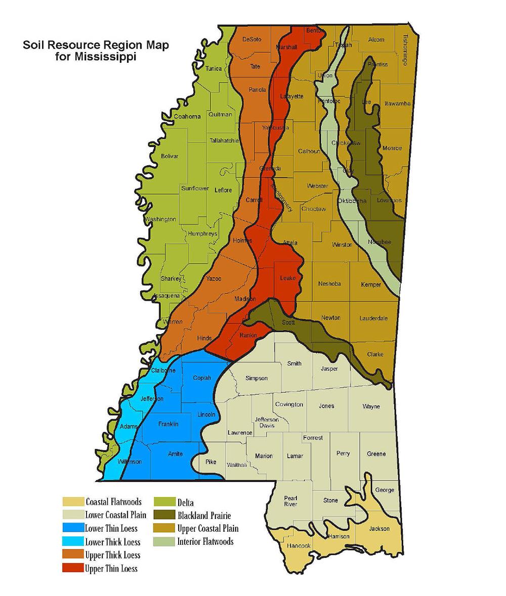 Forest Soils of Mississippi | Mississippi State University
