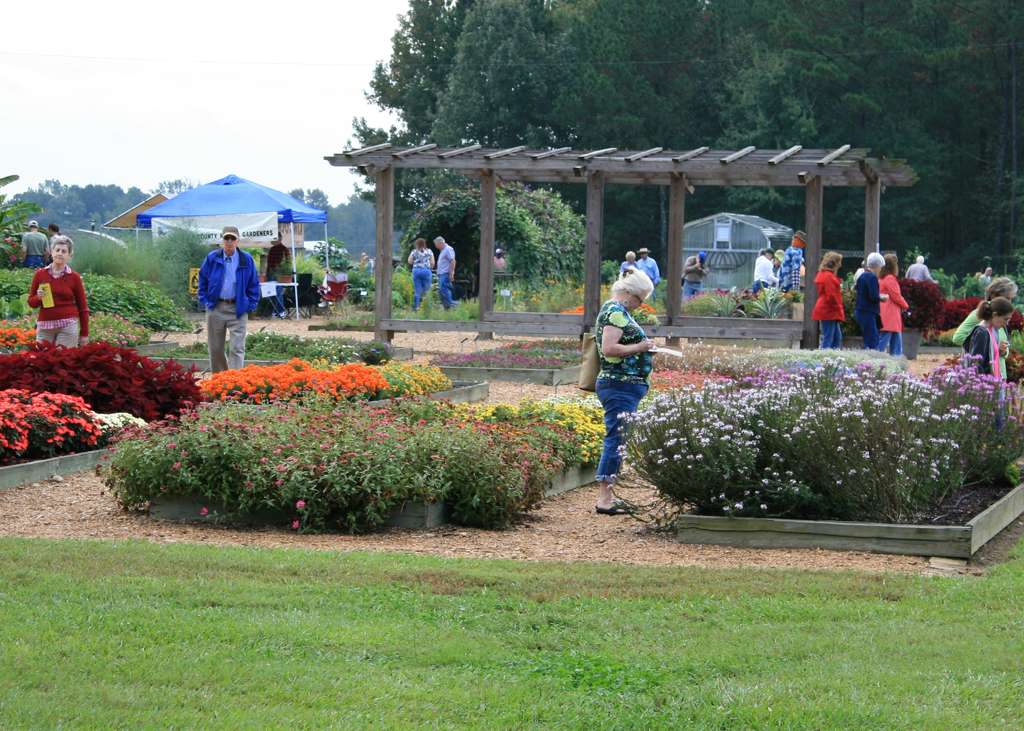 The Annual Fall Flower And Garden Fest In Crystal Springs Is One Of The  Premier Gardening