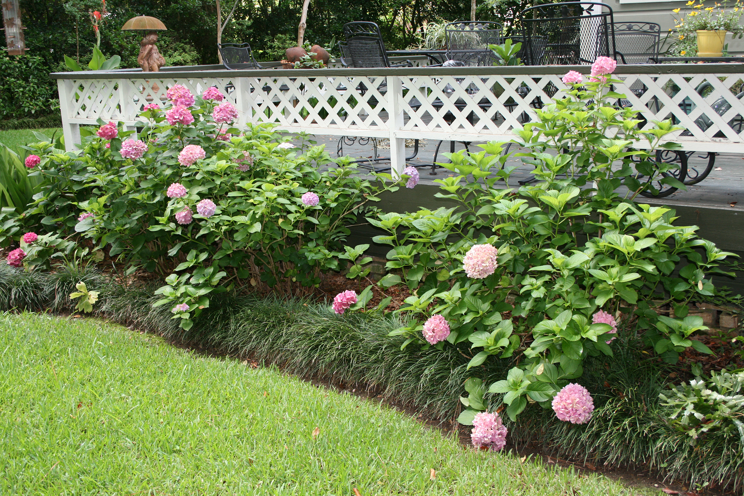 Example of a raised landscape bed that uses liriope as the border.