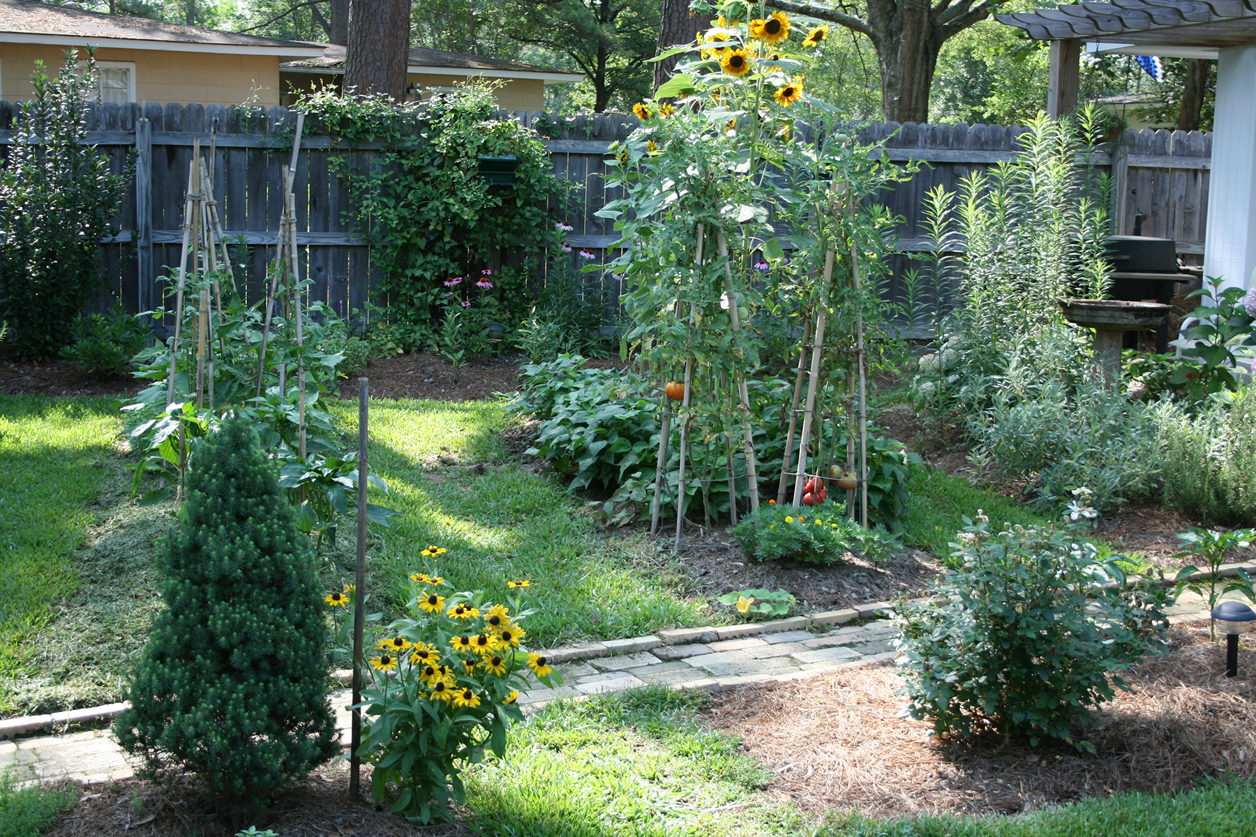 A raised bed vegetable garden with each bed simply mounded towards the middle.