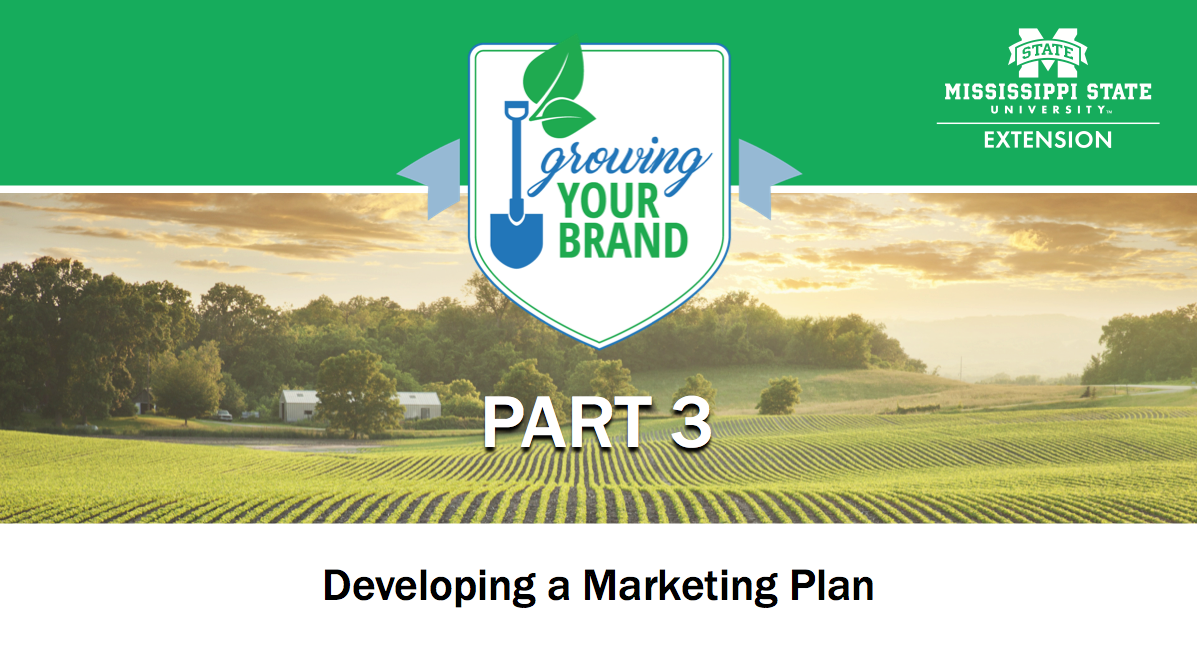 Growing Your Brand Part 3 image