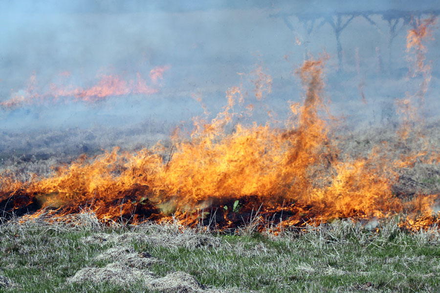 a pasture with flames rising as it burns